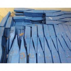 เล็บ-เหงือก-แก้ม-ส.พัฒนา-สีฟ้า-J-SUNG