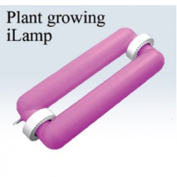 Plant growing iLamp