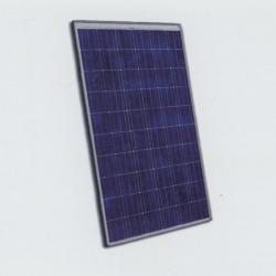 Poly-Crystalline Solar PV Module