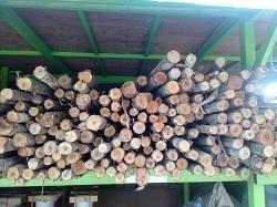 ไม้แปรรูป ไม้ก่อสร้าง