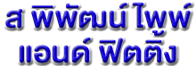 บริษัท ส พิพัฒน์ ไพพ์ แอนด์ ฟิตติ้ง จำกัด