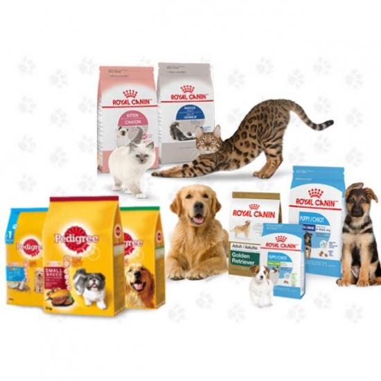 อาหารสำหรับรักษาโรคสัตว์เลี้ยง สระบุรี อาหารสัตว์ อุปกรณ์สัตว์เลี้ยง