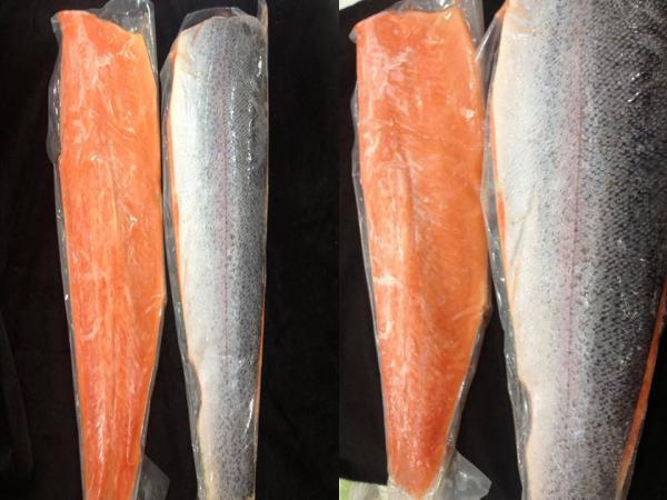 ปลาแซลม่อล